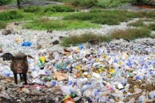 Plastic waste menace continues in the capital city