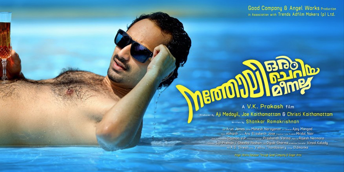 Natholi Cheriya Oru Meenalla Movie Review by Anand Ajayghosh