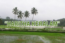 Kerala Forest department to launch 'Haritha Keralam' on June 5