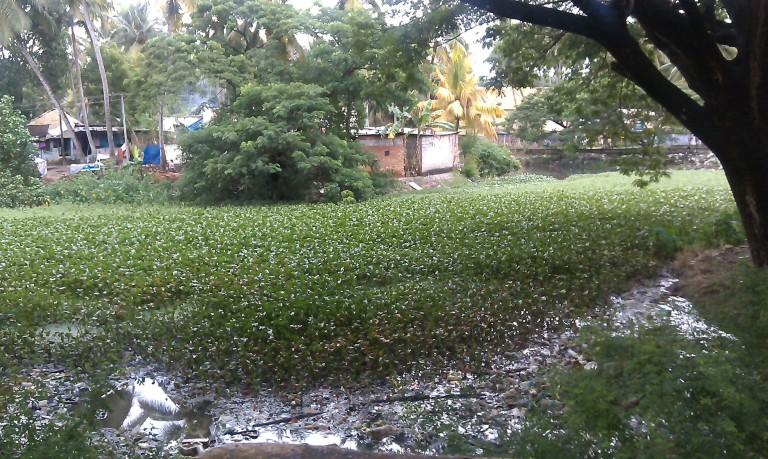 Parvathy-Puthanar-Trivandrum-768x459